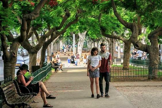 leafy Rothschild Blvd the heart of Tel Aviv