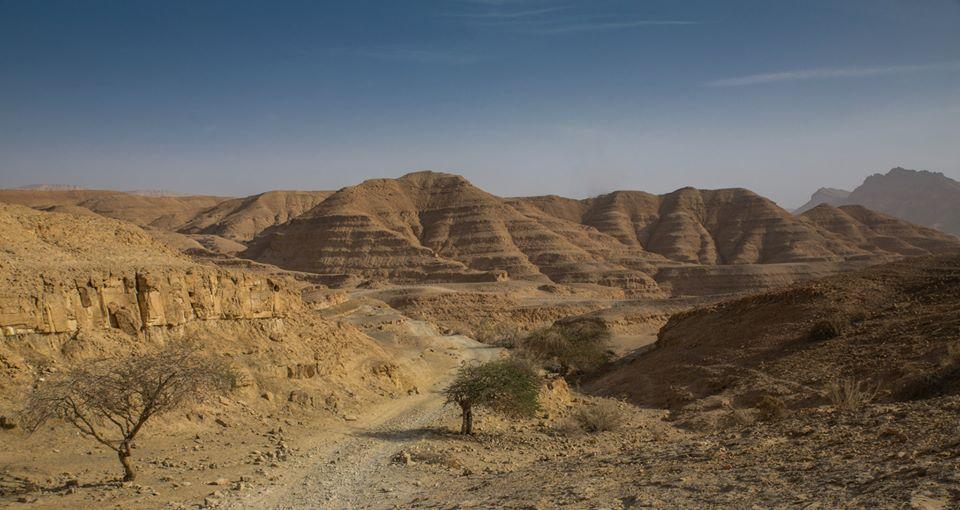 desert scenerey in Israel