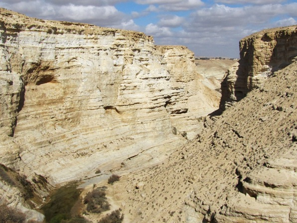 Ein Ovdat Canyon in the Negev