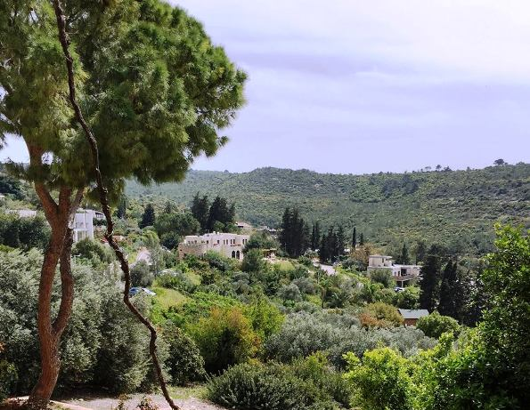 Ein Hod artists village on Mount Carmel