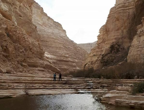 Ein Ovdat in the Negev Desert