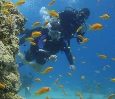 flight tel aviv to eilat  learn to dive in the Red Sea
