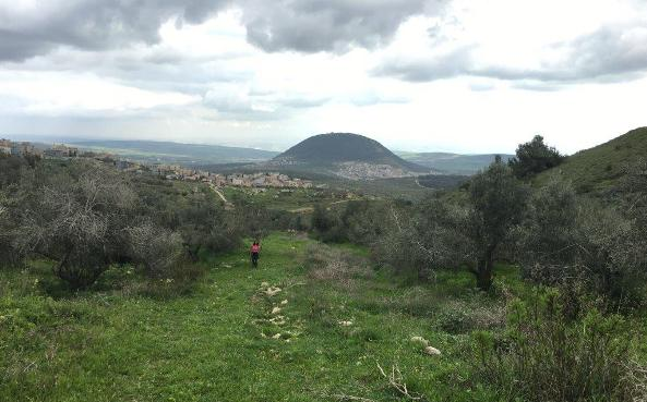 Mount Tabor in the Galilee in the north of Israel