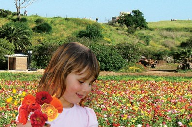 kids activities in tel aviv events in passover pesach