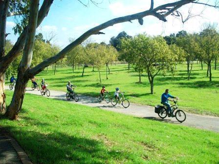 biking in Tel Aviv's Yarkon Park