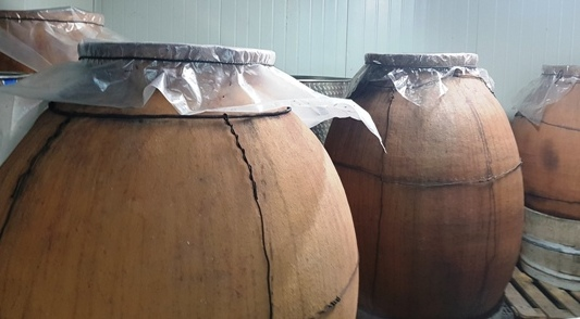 Win ferments in clay casks instead of barrels at Kamda Winery in the Judean foothills